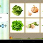 Karticky_sada_13_zelenina