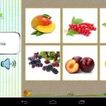 Karticky_sada_21_ovoce2