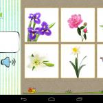 Karticky_sada_22_kvetiny