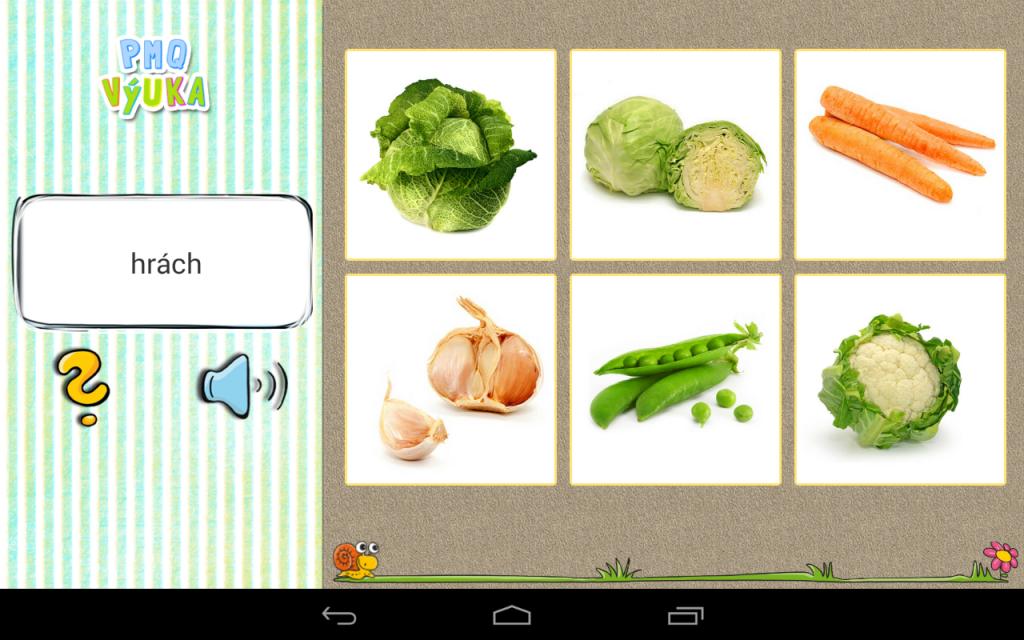 Karticky_zelenina